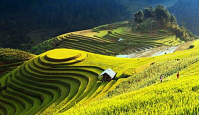 Witness the beauties of North West Vietnam