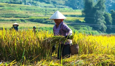 Discover North Vietnam from West to East