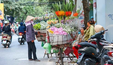 Highlight of the Northern & Central Vietnam | Authentic package tour