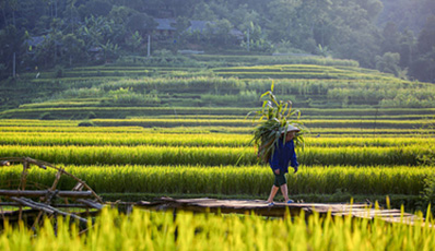 Landscape and people of the Northen & Central Vietnam | Authentic package journey