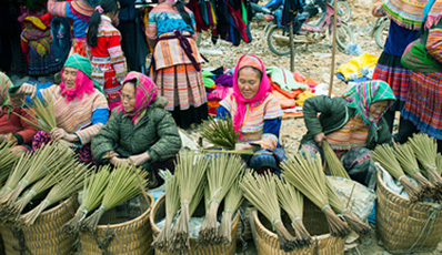 Easy Sapa - Bac Ha Tour by Shuttle bus