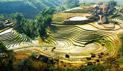 Easy discover Sapa | by Shuttle Bus from Hanoi