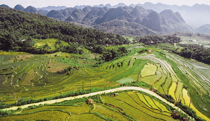 Vietnam Explorer| Authentic package tour